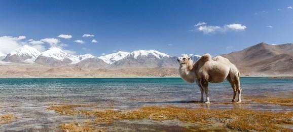 新疆旅游景点排名