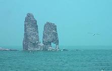 【玩美亲海之旅】青岛、海阳、威海、烟台、蓬莱、旅顺、大连双飞6日游