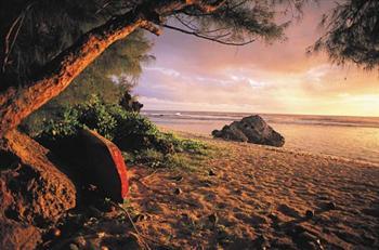 大溪地(Tahiti)-软吉若阿(Rangiroa)