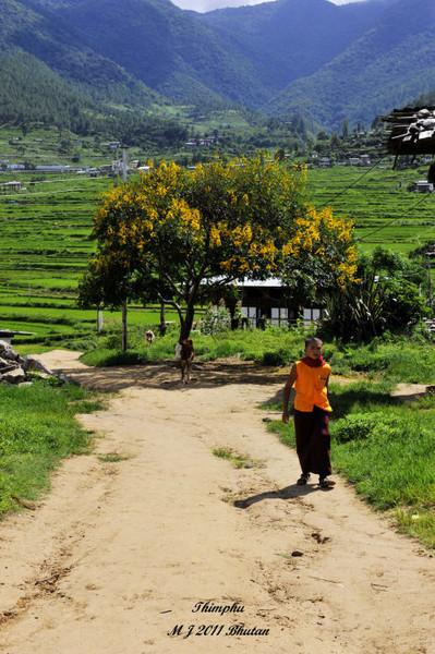 不丹旅游最佳季节