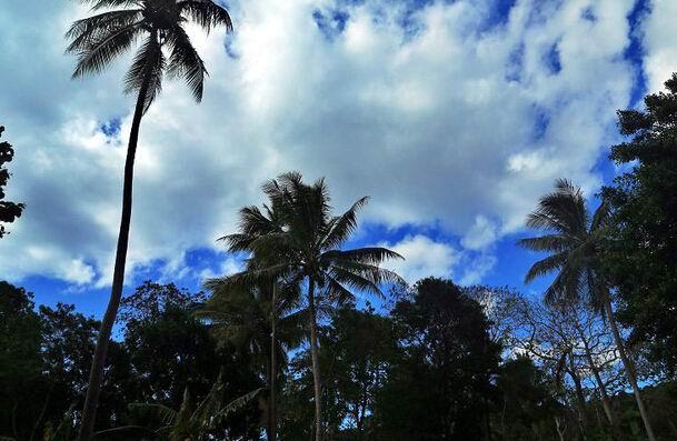 纯净瓦努阿图游玩乐虎国际官网