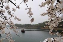 【高品自驾之旅】庐山西海温泉、花源谷赏枫、飞碟射击二日游图片
