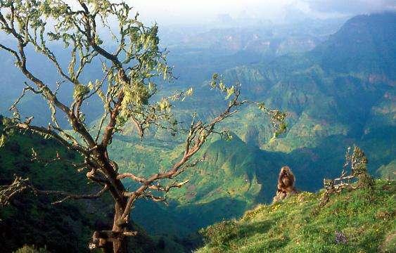 瑟门山国家公园