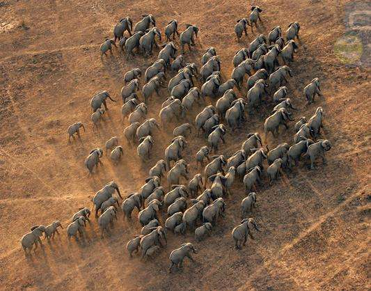 加兰巴国家公园