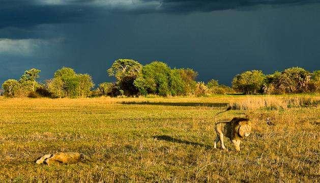 卡富埃国家公园