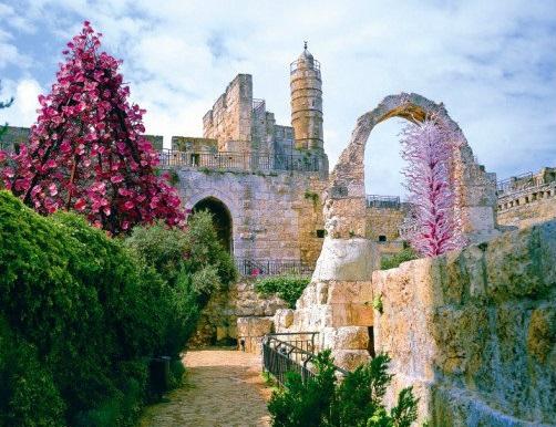 大卫城塔_耶路撒冷_以色列