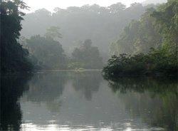 雷奥普拉塔诺生物圈保留地