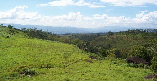 塔拉曼卡仰芝-拉阿米斯泰德保护区