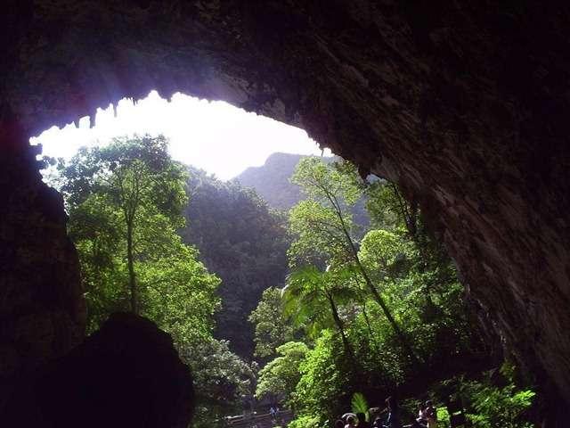 鸟洞国家公园旅游