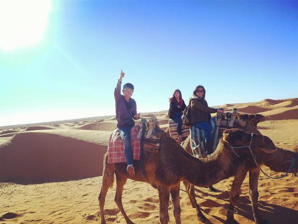北非旅游需要注意哪些方面