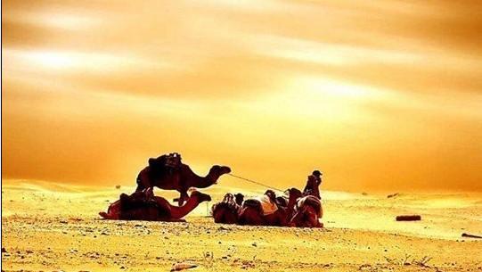 突尼斯的气候