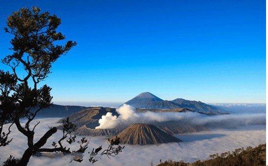 爪哇岛爪哇岛旅游概况、旅游必备