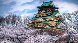 岳阳到日本旅游