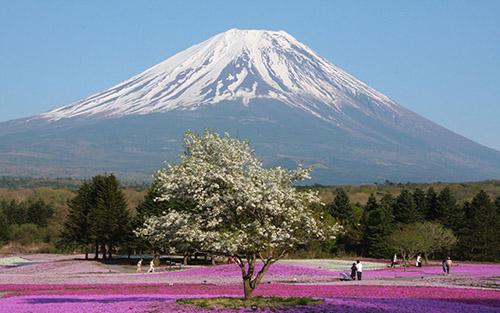 从湖南到日本旅游