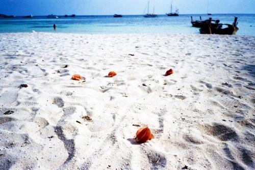 泰国里朴岛:最宜居住的小马尔代夫