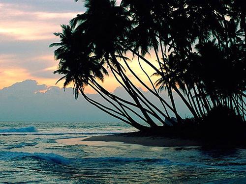 宗教圣地斯里兰卡——最美丽的岛屿