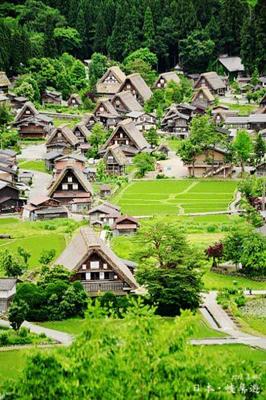 【长沙起止】大阪、名古屋、箱根、东京、富士山赏樱双飞6日游