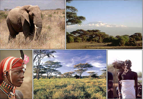 肯尼亚的奢华时光 超出想像
