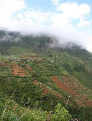 斯里兰卡:天造地设 岛中旅游必选之地