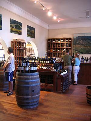 南非葡萄酒攻略