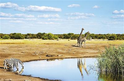 纳米比亚风景