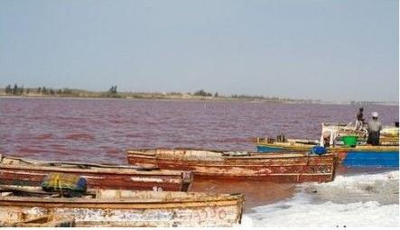 塞内加尔旅游必备