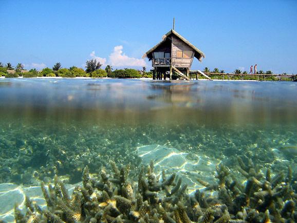 谁能百里挑一 马尔代夫哪个岛最好