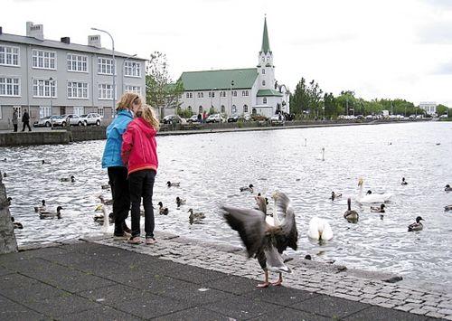 冰岛:被纯白晕染的桃花源