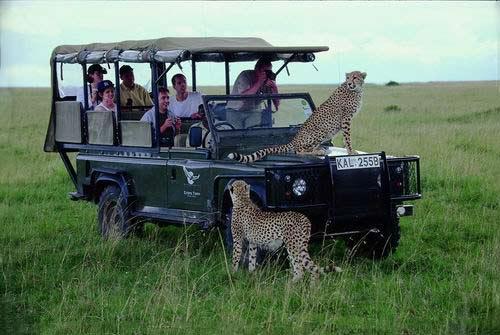 【深度肯尼亚】肯尼亚10天猎奇之旅