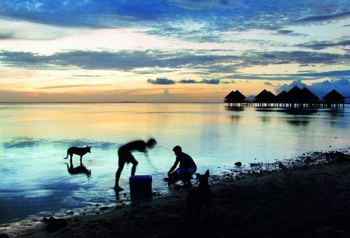 大溪地(Tahiti)-大溪地岛间交通