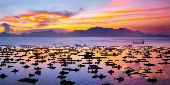 【海陵岛】美食之旅海陵岛+出海捕鱼+赤坎+大角湾双高三日游图片
