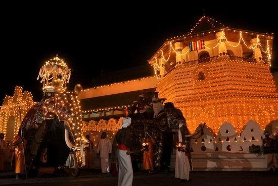 斯里兰卡佛牙节 世界上最隆重的佛教庆典